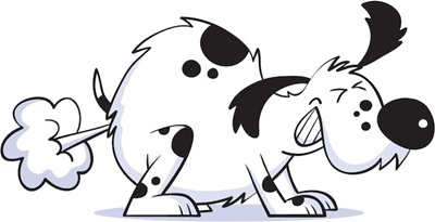 flatulencias-en-los-perros